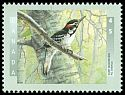Cl: Hairy Woodpecker (Picoides villosus) <<Pic chevelu>>  SG 1779 (1998) 140