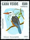Cl: Grey-headed Kingfisher (Halcyon leucocephala) <<Passarinha>>  SG 514 (1981) 90