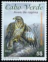 Cl: Eurasian Buzzard (Buteo buteo bannermani) <<Asa curta>>  new (2008)  [6/16]