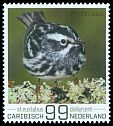 Cl: Black-and-white Warbler (Mniotilta varia) new (2017)  [5/26]