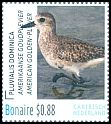 Cl: American Golden-Plover (Pluvialis dominica) <<Amerikaanse Goudplevier>>  new (2016)  [10/23]