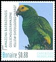 Cl: Yellow-shouldered Parrot (Amazona barbadensis) <<Geelschouderamazone>>  new (2016)  [10/23]