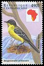 Cl: Yellow Wagtail (Motacilla flava) new (1999)
