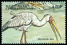 Cl: Yellow-billed Stork (Mycteria ibis) new (2000)