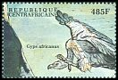 Cl: White-backed Vulture (Gyps africanus) new (2000)