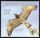 Cl: Short-toed Eagle (Circaetus gallicus) new (1998)