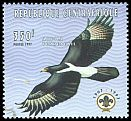 Cl: Verreaux's Eagle (Aquila verreauxii) new (1998)