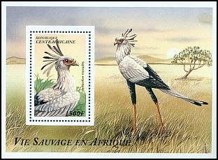 Cl: Secretarybird (Sagittarius serpentarius) new (1997)