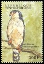 Cl: Pygmy Falcon (Polihierax semitorquatus)(Out of range)  new (2000)
