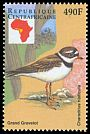 Cl: Common Ringed Plover (Charadrius hiaticula) new (1999)