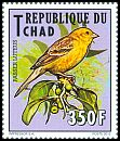 Cl: Sudan Golden Sparrow (Passer luteus)(I do not have this stamp)  new (2012)  [8/10]