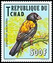Cl: Yellow-shouldered Widowbird (Euplectes macrourus)(I do not have this stamp)  new (2012)  [8/10]