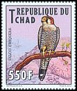 Cl: Red-necked Falcon (Falco chicquera)(Repeat for this country)  new (2013)  [9/22]