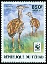 Cl: Arabian Bustard (Ardeotis arabs)(Repeat for this country)  new (2017)  [11/29]
