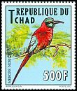 Cl: Northern Carmine Bee-eater (Merops nubicus)(Repeat for this country)  new (2012)  [5/42]