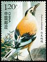 Cl: Xinjiang Ground-Jay (Podoces biddulphi)(Endemic or near-endemic)  SG 5252f (2008) 30 [4/44]