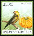 Cl: Eurasian Golden Oriole (Oriolus oriolus)(Repeat for this country)  new (2009)  [6/60]