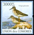 Cl: Wood Sandpiper (Tringa glareola) new (2009)  [6/60]