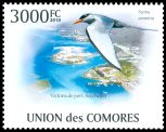 Cl: River Tern (Sterna aurantia)(Out of range and no other stamp) (I do not have this stamp)  new (2010)  [7/8]