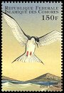 Comoro Is new (1998)