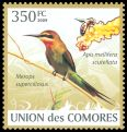 Cl: Madagascar Bee-eater (Merops superciliosus)(Repeat for this country)  new (2009)  [6/50]