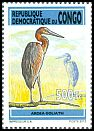 Cl: Goliath Heron (Ardea goliath) new (2013)  [9/17]