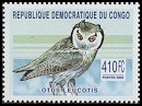 Cl: Southern White-faced Owl (Ptilopsis granti)(not catalogued)  (2002)  [2/4]