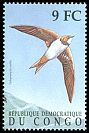 Cl: Alpine Swift (Tachymarptis melba) SG 1617b2 (2000)