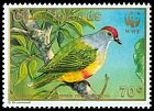 Cl: Cook Islands Fruit-Dove (Ptilinopus rarotongensis)(Endemic or near-endemic)  SG 1225 (1989) 175