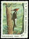 Cl: Ivory-billed Woodpecker (Campephilus principalis bairdii)(Endemic or near-endemic)  SG 1003d (1961) 125