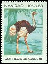Cl: Ostrich (Struthio camelus)(Out of range)  SG 1556 (1967) 65