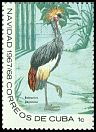 Cl: Black Crowned-Crane (Balearica pavonina)(Out of range)  SG 1559c (1967) 65