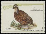 Cl: Northern Bobwhite (Colinus virginianus cubanensis) <<Codorniz>> (Repeat for this country)  SG 1799 (1970) 150 [3/23]