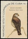 Cl: Hook-billed Kite (Chondrohierax uncinatus) <<Gavilan caguarero>> (Repeat for this country)  SG 1815a (1970) 90 [3/7]