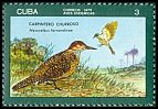 Cl: Fernandina's Flicker (Colaptes fernandinae) <<Carpintero Churroso>> (Endemic or near-endemic)  SG 2303 (1976) 35