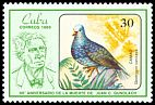 Cl: Grey-fronted Quail-Dove (Geotrygon caniceps) <<Camao>> (Endemic or near-endemic)  SG 3156 (1986) 350