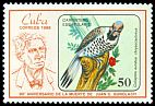 Cl: Northern Flicker (Colaptes auratus chrysocaulosus) <<Carpintero Escapulario>>  SG 3157 (1986) 525