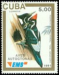 Cl: Ivory-billed Woodpecker (Campephilus principalis) <<Carpintero real>> (Endemic or near-endemic)  SG 3642E (1991)