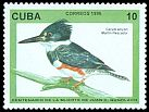 Cl: Belted Kingfisher (Ceryle alcyon) <<Martin pescador>>  SG 4063 (1996) 10