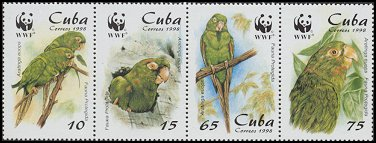 Cl: Cuban Parakeet (Aratinga euops)(Endemic or near-endemic)  SG 4298-1 (1998) 325 [3/10]