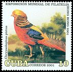 Cl: Golden Pheasant (Chrysolophus pictus)(Out of range)  SG 4468 (2001)