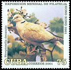 Cl: Eurasian Collared-Dove (Streptopelia decaocto)(Out of range)  SG 4471 (2001)