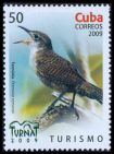 Cl: Zapata Wren (Ferminia cerverai) <<Ferminia>> (Endemic or near-endemic)  SG 5429 (2009)  [6/28]