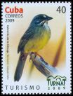 Cl: Zapata Sparrow (Torreornis inexpectata) <<Cabrerito de la Clenaga>> (Endemic or near-endemic)  SG 5428 (2009)  [6/28]
