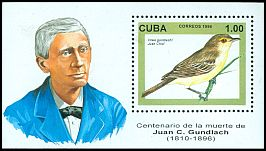 Cl: Cuban Vireo (Vireo gundlachii)(Endemic or near-endemic)  SG 4068 (1996)
