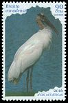Cl: Wood Stork (Mycteria americana) new (2016)  [10/19]
