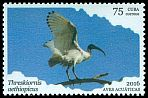Cl: Sacred Ibis (Threskiornis aethiopicus)(Out of range)  new (2016)  [10/19]