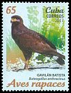 Cl: Common Black-Hawk (Buteogallus anthracinus) <<Gavil&aacute;n Batista>> (Repeat for this country)  new (2017)  [11/37]