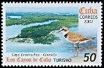Cl: Snowy Plover (Charadrius alexandrinus) SG 5072 (2007)