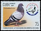 Cl: Rock Pigeon (Columba livia)(Introduced)  SG 5040 (2007)  [4/22]